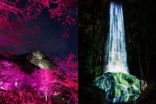 【藝術】這裡是仙境還是魔幻森林?「teamLab」光影展 6 度回歸日本佐賀縣御船山樂園!